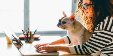 woman with French bulldog sitting at desk