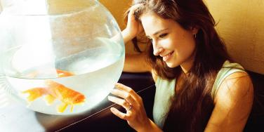 Woman Gets Revenge By Frying, Eating Ex's Goldfish