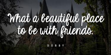 Best Harry Potter Quotes Friendship Quotes Life Quotes