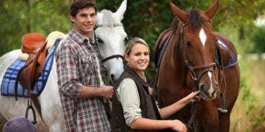 Horse Spirit Animal Meaning & Symbolism