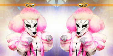 The Masked Singer Spoilers! Who Is The Poodle?
