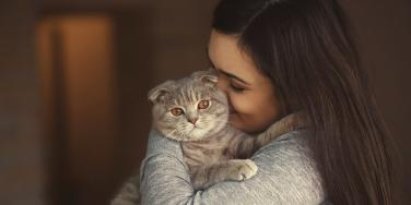 8 Reasons Why My Narcissistic Cat Would Be The Worst Husband Ever