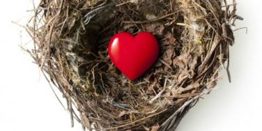 How To Make The Most Of An Empty Nest [EXPERT]