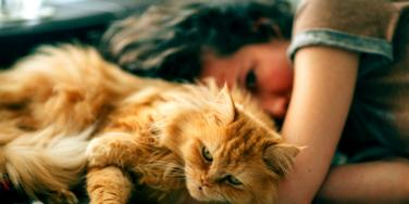 woman who is a loner with her cat