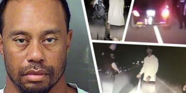 Details About The Uses, Interactions & Likelihood Of Addiction Re: All 5 Drugs Found In Tiger Woods' System On The Night Of His DUI