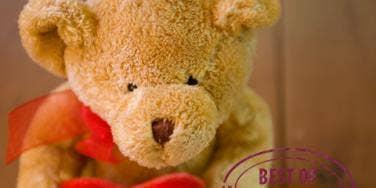 vday teddy bear