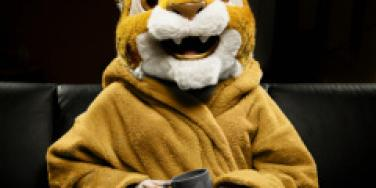 furry tiger furries