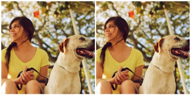 5 Things To Consider Before Adopting A Pet During COVID-19