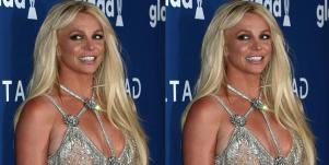 Who Is Britney Spears' Conservator, Jodi Montgomery?
