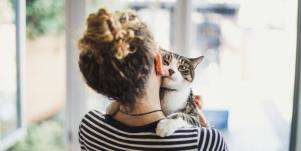 11 Things Cats Teach Us About Loving Someone (Told In GIfs)