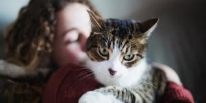 New Research Proves That Cats Can Heal You