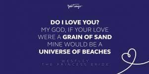 westley the princess bride movie quote