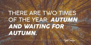 27 Fall Season Quotes About The Beauty Of Autumn