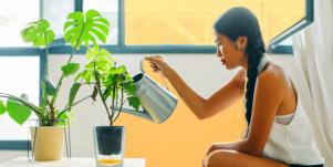 woman inside watering her house plants