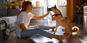 woman high five-ing a dog