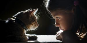 Toxoplasmosis: Your Cat Is Affecting Your Kids' Mental Health, Says Science