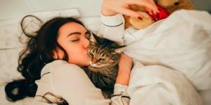 How Cats Can Protect Your Home From Ghosts And Negative Spirits