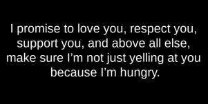 cute funny silly love quotes for him: I promise to love you, respect you, support you, and above all else, make sure I'm not just yelling at you because I'm hungry.
