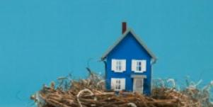 miniature house in nest