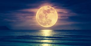 Full Moon In Capricorn Lunar Eclipse Tarot Card Reading For July 4-5, 2020