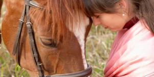 horses couples therapy