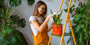 How To Grow An Indoor Garden When You Have No Outdoor Space