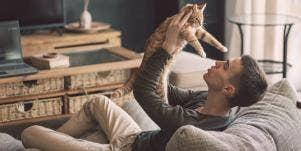 5 Best Low-Maintenance Pets For Apartment Living