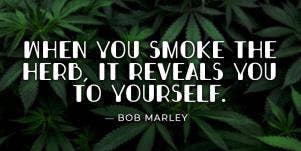 Best Marijuana Quotes Smoking Weed Cannabis