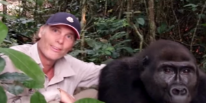 Family Reunites With Gorilla After 12 Years
