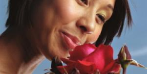 woman smell rose