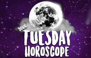 Daily Horoscope + Tarot Reading & Numerology, Tuesday, December 3, 2019, All Zodiac Signs